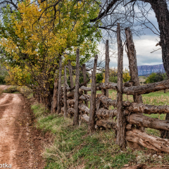 _JDL1487 copy Old log Fence _